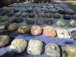 کشف وضبط ده ها کیلو تریاک توسط پولیس غزنی