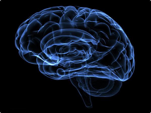http://www.jomhornews.com/images/docs/000048/n00048071-b.jpg