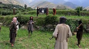 ننګرهار کې د داعش مرستیال د سولې له بهیر سره یو ځای شو