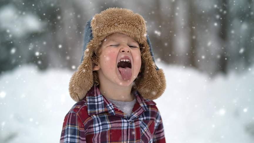 عکس از سایت Shutterstock.com